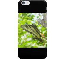 Butterfly02 iPhone Case/Skin