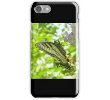 Butterfly02 iPhone Case/Skin