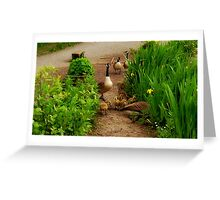 Family outing... Greeting Card