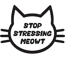 Stop Stressing Meowt Photographic Print
