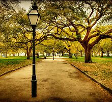 A Walk in the Park: Charleston, SC by Kadwell
