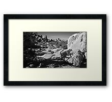 Exploring the Desert Framed Print