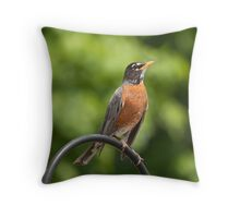 Male robin Throw Pillow