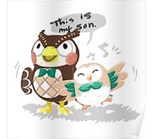 Blathers & Rowlet Poster