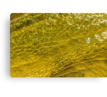 Water and sand, yellow Canvas Print