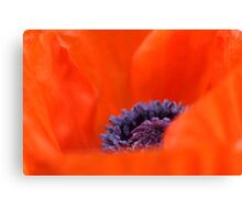 Poppy Heart  Canvas Print