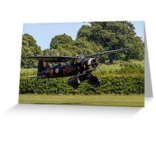 Westland Lysander IIIa V9367 G-AZWT in over the hedge Greeting Card