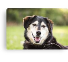Happy Dog (non-clothing products) Canvas Print