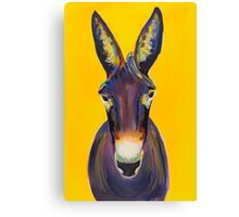 Colorful Donkey on Yellow Background Canvas Print