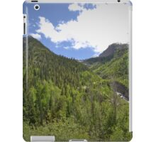 Water shapes these giants iPad Case/Skin