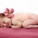 Summer Baby by Julie Thomas