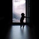 A Fairytale Awaits by Julie Thomas