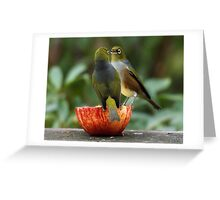 I was here first.......... Silver Eyes ! Greeting Card