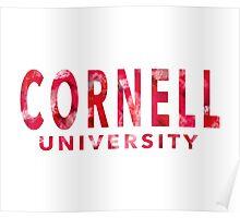 Cornell University Poster
