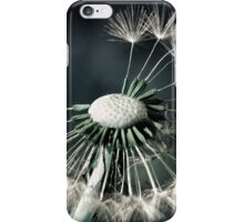 One Wish iPhone Case/Skin