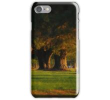 Before The Sun Sets iPhone Case/Skin