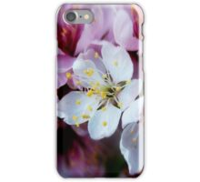 Spring Explosion iPhone Case/Skin