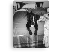 Nela on bed gray scale  Canvas Print