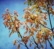 New Oak Leaves by vigor