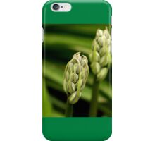 A Bellflower, Before It Blooms iPhone Case/Skin