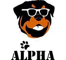 Geeky Alpha Photographic Print