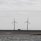 Windmills by Mary Ann Reilly