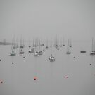 Sailboats by Mary Ann Reilly