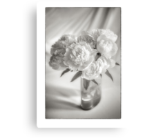 Peony Roses Canvas Print