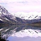 Alaskan Mountains by Elizabeth  Lilja