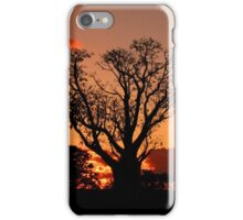 Boab Sunset Iphone Cover iPhone Case/Skin