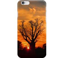 Boab Tree - Cloudy Orange Sunset IPhone Cover iPhone Case/Skin