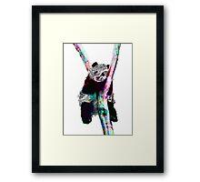 Psychedelic Pandas Framed Print