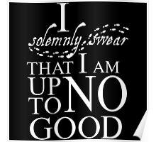 Harry Potter I Solemnly Swear Poster