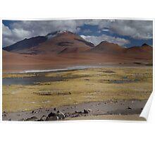 Atacama Landscape II Poster