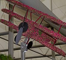 Biplane at the RHS Chelsea Flower Show Birmingham City by Keith Larby