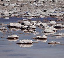 Salt patch by DianaC