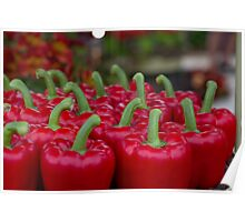 Red peppers on display at RHS Chelsea Flower Show Winner Poster
