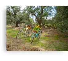 Ladies Vintage Bicycles... Canvas Print