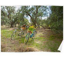 Ladies Vintage Bicycles... Poster