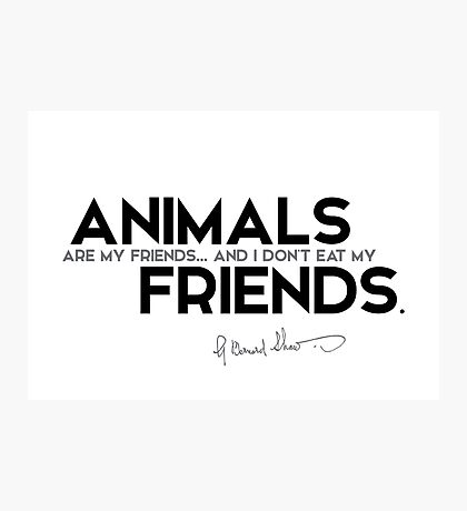 animals are my friends - george bernard shaw Photographic Print