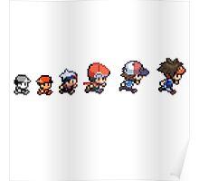 Pokemon Evolution Poster