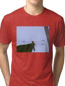 Dragonfly013 Tri-blend T-Shirt