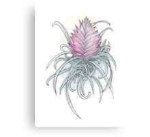 Pink Quill Canvas Print