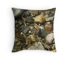 Dragonfly027 Throw Pillow