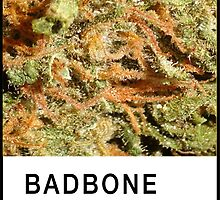 Bad Bone (Pantone) Weed 420 by bexsimone