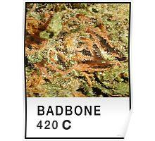 Bad Bone (Pantone) Weed 420 Poster