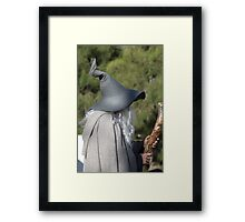Harry Who?  No Potter Here! Framed Print