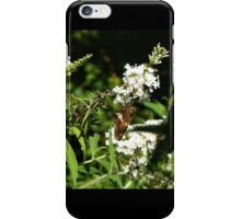 Moth011 iPhone Case/Skin