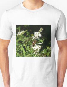 Moth011 Unisex T-Shirt