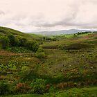 Mullaghbolig Hill, Co Tyrone by Sarah Cowan